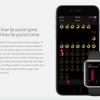 نگاهی به اپلیکیشن Activity، مشاهده فعالیتهای جسمانی انجام شده توسط اپل واچ