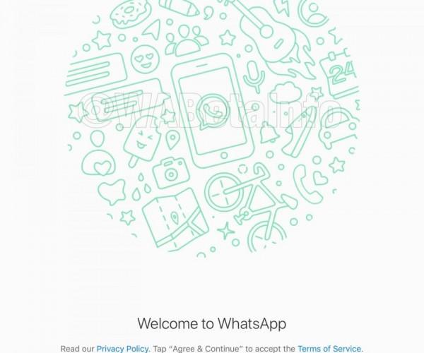 انتشار تصاویری از نسخه آیپد اپلیکیشن Whatsapp